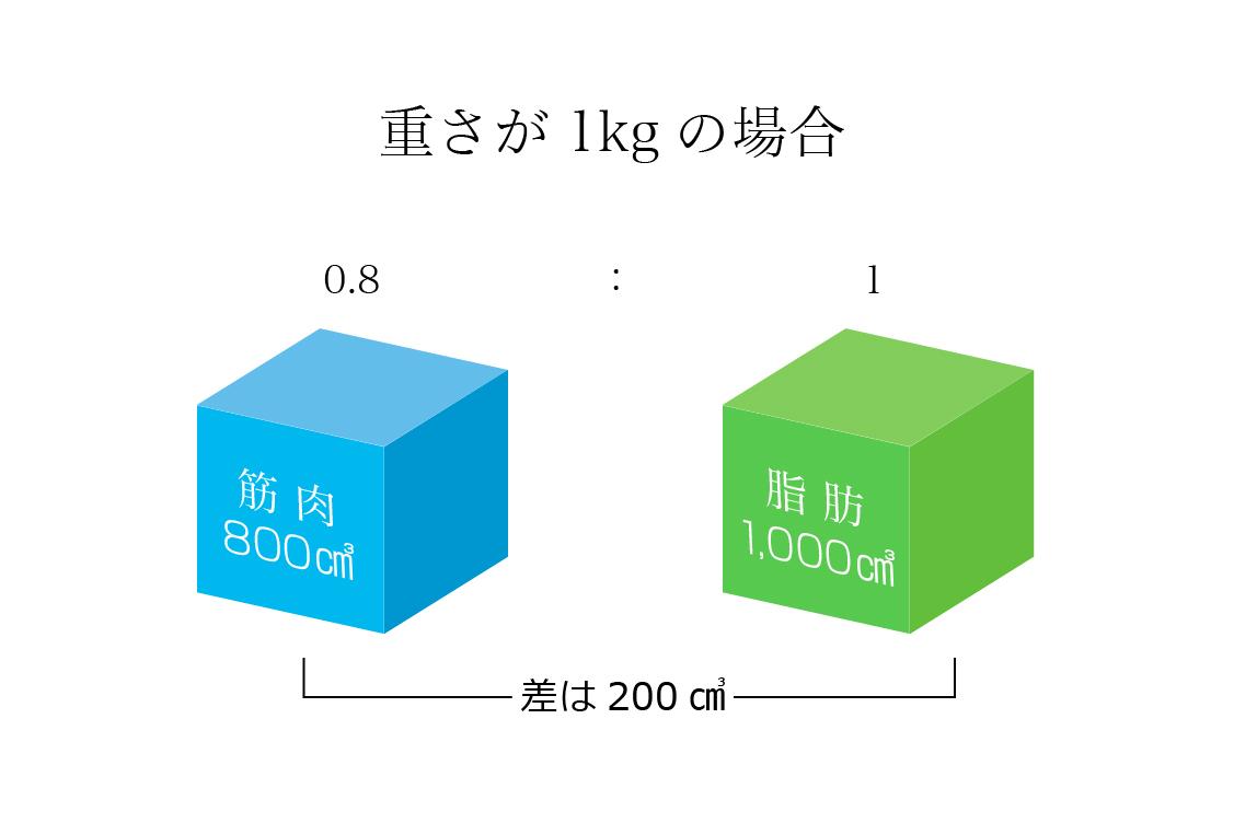 体 脂肪 トレ 減ら ない 筋